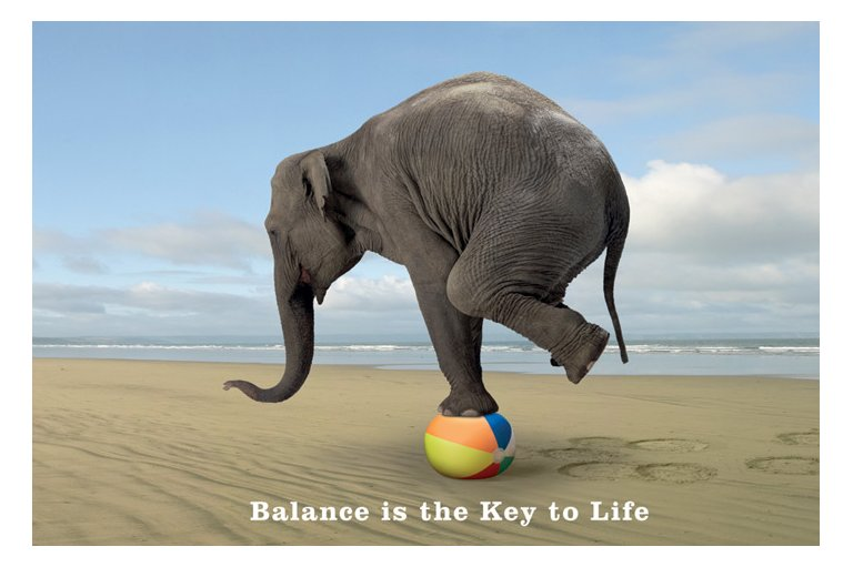 Balance In All Things Karma Yoga Center